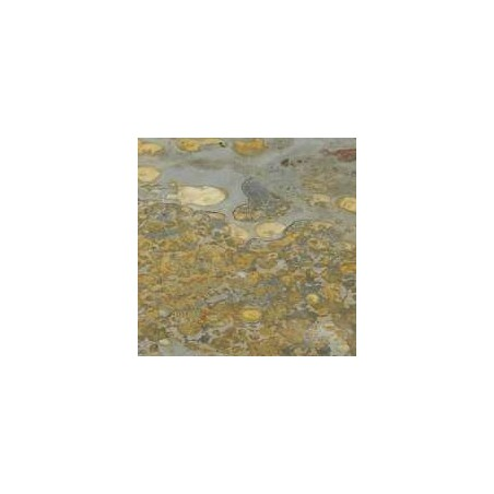 Rustic Slate Paving - 600x800mm Single Size Pack
