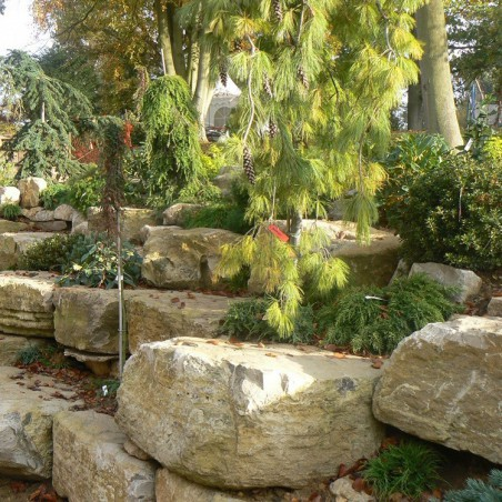 Purbeck Limestone Rockery - Available in 0.5 tonne or 1 tonne cages