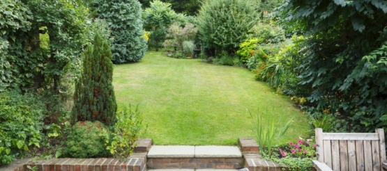 How to create a beautifully landscaped back garden on a budget