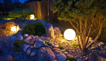 The top landscaping trends to monitor in 2020