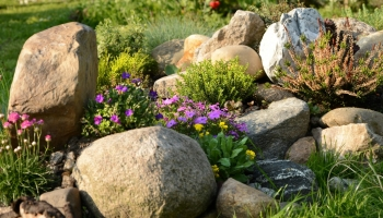 4 ways to breathe fresh life into your garden rockery